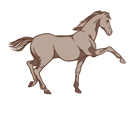 Vector horse isolated on white