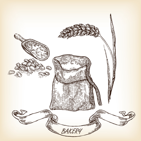 Bakery sketch.Hand drawn illustration of sack, grain, meal, wheat vector