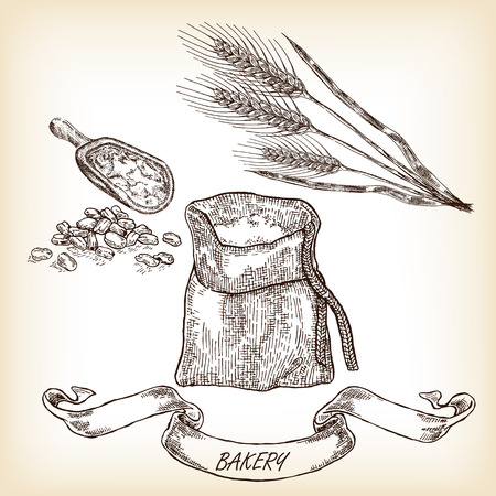 Bakery sketch. Hand drawn illustration of sack, grain, meal, wheat vector