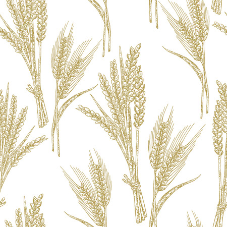 Wheat seamless pattern. Vector illustration in sketch style. Isolated on white.