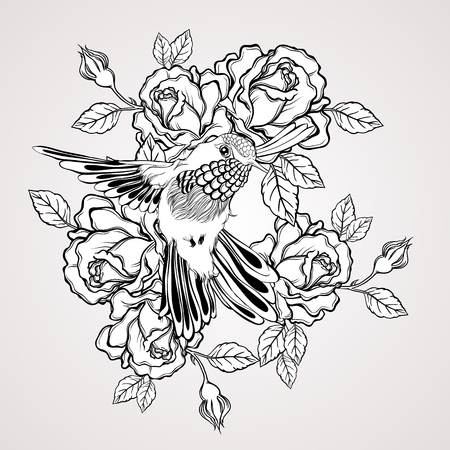 Hand drawn flying humming bird with rose flower vintage style. Elegant tattoo art. Vector illustration isolated Illustration