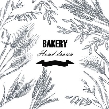 Bread design template. Hand drawn wheat set. Vector illustration Illustration