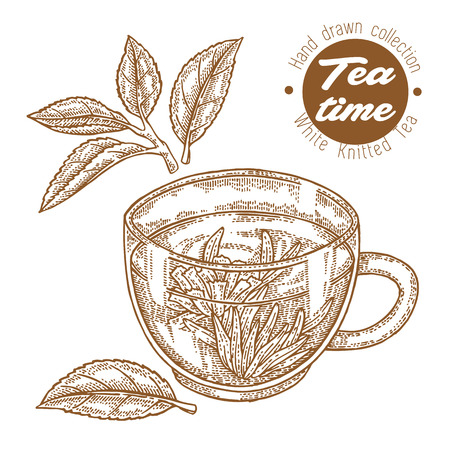 Hand drawn cup of tea. White knitted tea isolated on white. Vector illustration engraved. Design for packaging.