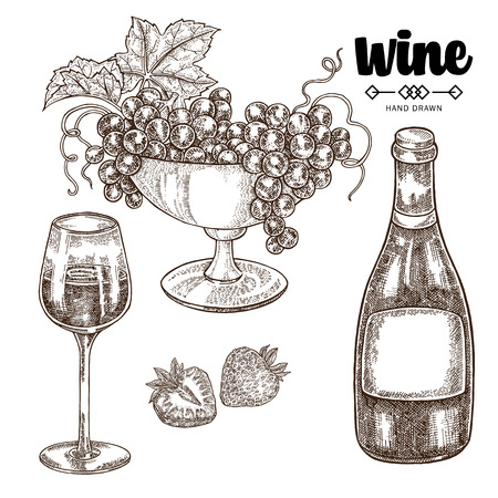 Hand drawn wine bottle with grapes and wineglass. Vector illustration vintage. Alcohol drink set in sketch style. 矢量图像