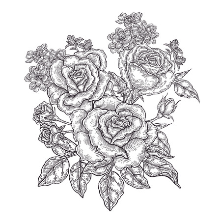 Hand drawn rose flowers and leaves. Vintage floral composition with spring garden flowers. Vector illustration engraved. 免版税图像 - 114801186