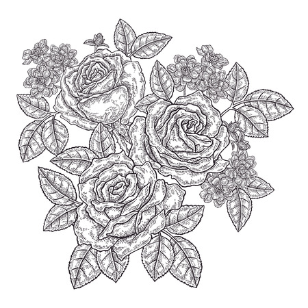 Hand drawn rose flowers and leaves. Vintage floral composition with spring garden flowers. Vector illustration engraved.