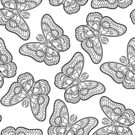 Seamless pattern with butterflies. Stylised moth in line art style. Black and white vector illustration. 免版税图像 - 121948009