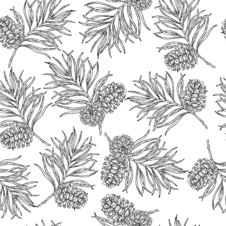 Seamless pattern with hand drawn pine cones and branches. Vector illustration engraved. Design for Christmas greeting cards and packaging. 矢量图像