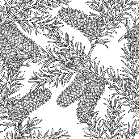 Seamless pattern with hand drawn fir cones and branches. Vector illustration engraved. Design for Christmas greeting cards and packaging. 免版税图像 - 121948013
