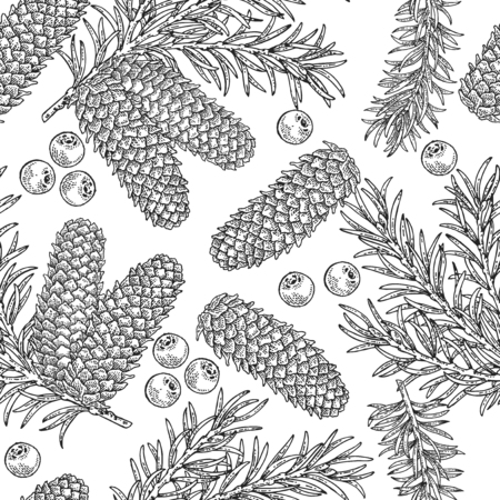 Seamless pattern with hand drawn fir cones, branchesand juniper berries. Vector illustration engraved. Design for Christmas greeting cards and packaging. 免版税图像 - 121948015
