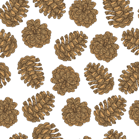 Seamless pattern with hand drawn pine cones. Vector illustration engraved. Design for Christmas greeting cards and packaging.