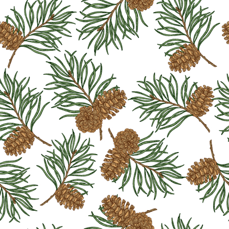 Seamless pattern with hand drawn pine cones and branches. Vector illustration engraved. Christmas plants design. 矢量图像