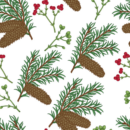 Seamless pattern with hand drawn fir cones and branches. Vector illustration engraved. Design for Christmas greeting cards and packaging. 矢量图像