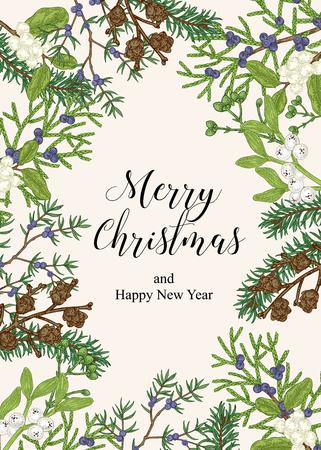 Hand drawn Christmas card with winter plants. Spruse, mistletoe, juniper and cones vector illustration. Botanical design elements. 免版税图像 - 121948026