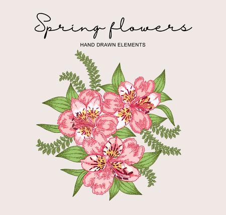 Spring flowers composition. Hand drawn alstroemeria flowers and leaves. Vintage vector botanical illustration. 免版税图像 - 121948039