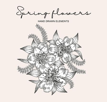 Spring flowers composition. Hand drawn alstroemeria flowers and leaves. Vintage vector botanical illustration. 免版税图像 - 121948044