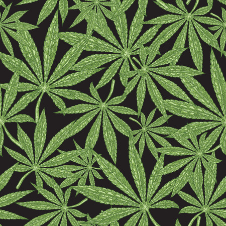 Cannabis seamless pattern. Green leaves marijuana on black background. Hand drawn vector illustration.