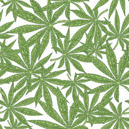 Cannabis seamless pattern. Green leaves marijuana on white background. Hand drawn vector illustration. Ilustração