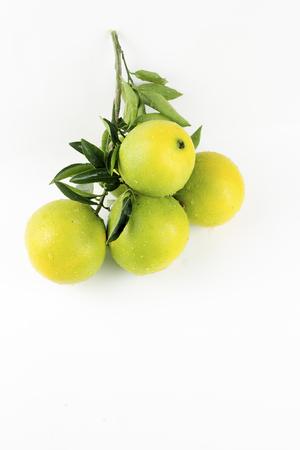 Sinaasappel op de witte achtergrond
