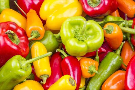 The Vegetables; Colorful Peppers on white background