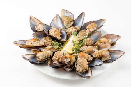 Stuffed mussel, seafood concept photo 免版税图像