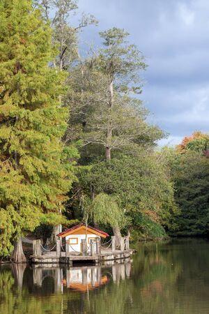 Istanbul / Turkey, Ataturk arboretum autumn view. Travel concept photo.