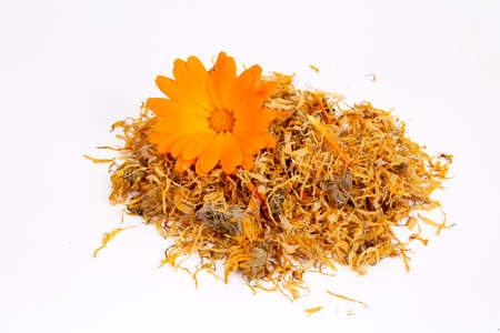 Fresh and dried calendula officinalis herbal flowers Stok Fotoğraf