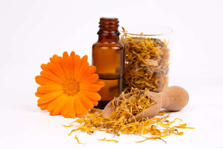 Herbal calendula officinalis in the glass and drop oil Isolated