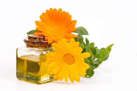 Herbal calendula officinalis in the glass and drop oil Isolated Stock Photo