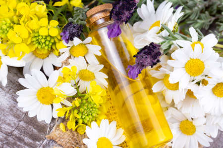 Mixed herbal oil. Essential oil various. Colorful flowers.