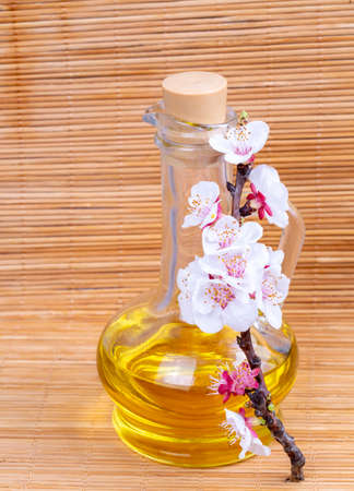 Apricot flower, almond oil on the wooden background