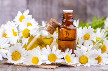 Essential oil in glass bottle with fresh chamomile flowers, beauty treatment. Imagens
