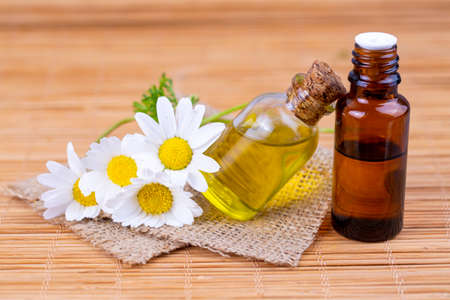 Essential oil in glass bottle with fresh chamomile flowers, beauty treatment. Banque d'images