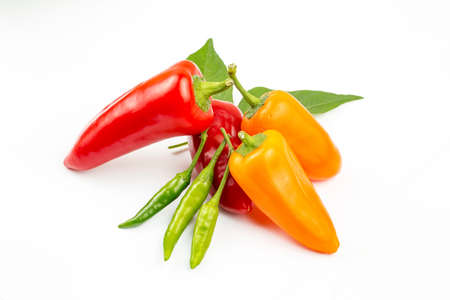Colorful organic sweet bell peppers, natural background.