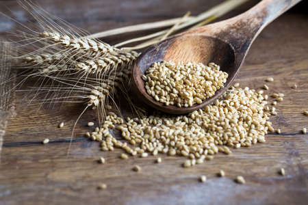 Wheat and wheat ears background. Food concept photo.