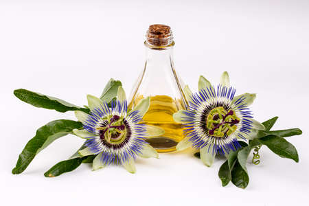 Passiflora flower herb oil