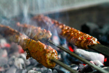 Traditional delicious Turkish foods; Adana Kebab and cop sis