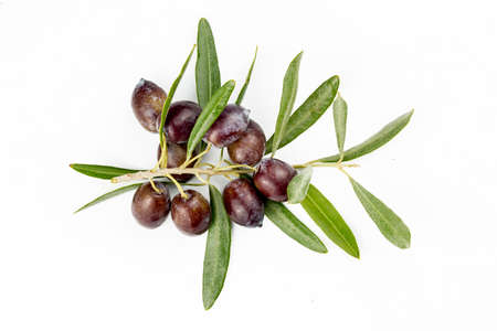 Fresh green olive on the white background.
