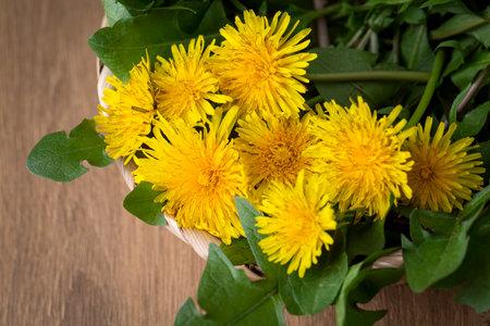 Whole dandelion plants with roots in a wicker basket 免版税图像