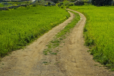 road side: Pathway in the fields - Malta Stock Photo