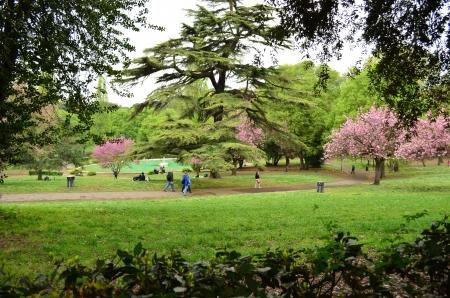 familiy: Gardens of Villa Borghese in Rome - Italy