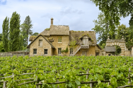 The Farm and the vineyards located in the Trianon  Versailles, France