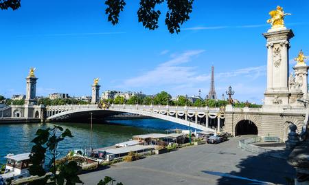 champs elysees quarter: Pont Alexandre in Paris  France