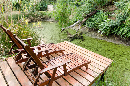 ornamental garden: Relaxing by the pond in Swellendam South Africa