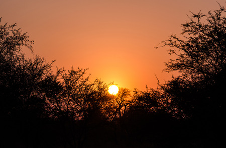 kruger park: Sunset in Kruger Park South Africa