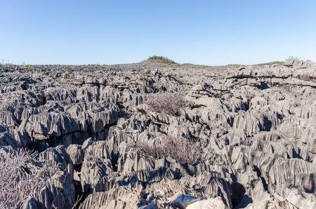 treck: Grey Tsingy in Ankarana Park Madagascar