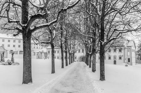 A snowy alley in Stams Austria Imagens