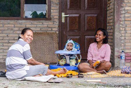 sumatra: Indonesian women extracting corn in Samosir in Sumatra, Indonesia