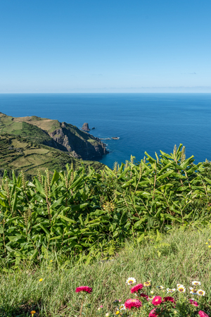 The western coast of the island of Flores in the Azores, Portugal Banco de Imagens