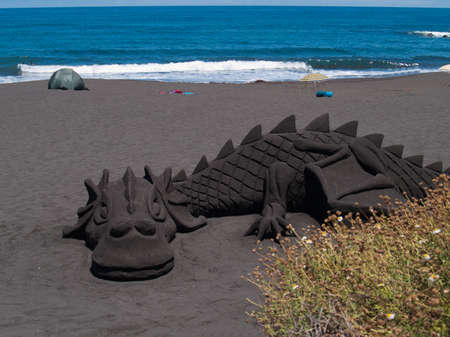 sand dragon on volcanic beach